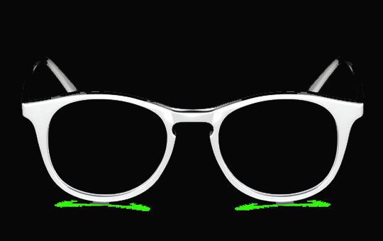Eyeglasses inverted 4